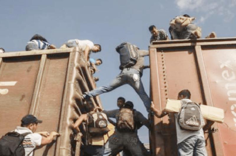 Aseguraron a 30 migrantes que se trasladaban en un tren en Chiapas