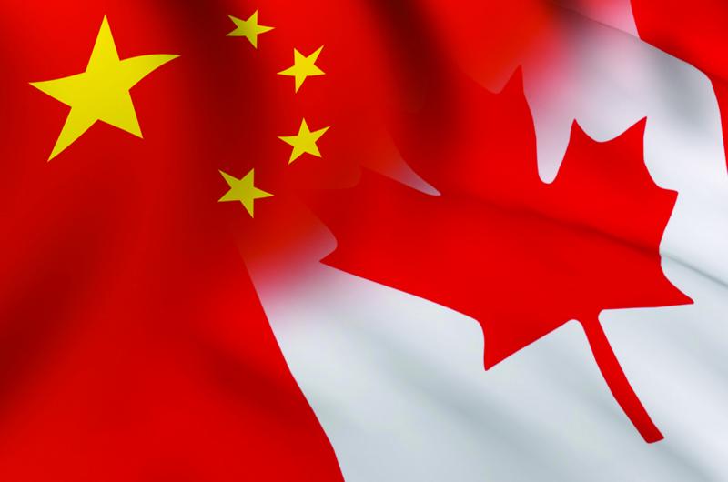 Tensión China-Canadá sube tras suspensión de ventas de canola canadiense