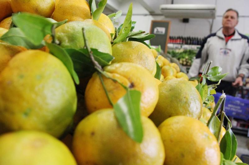 Abrigarse y comer frutas, recomiendan alcaldías a habitantes ante frío