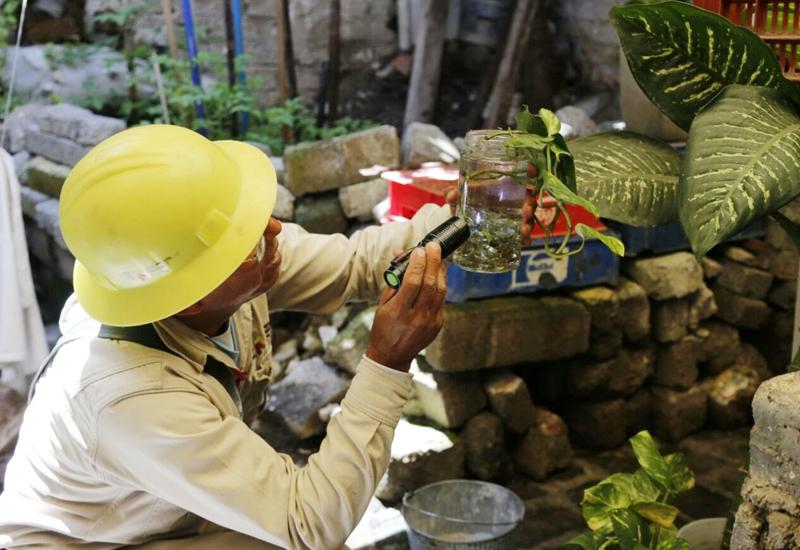 Suman 179 casos de dengue en Michoacán