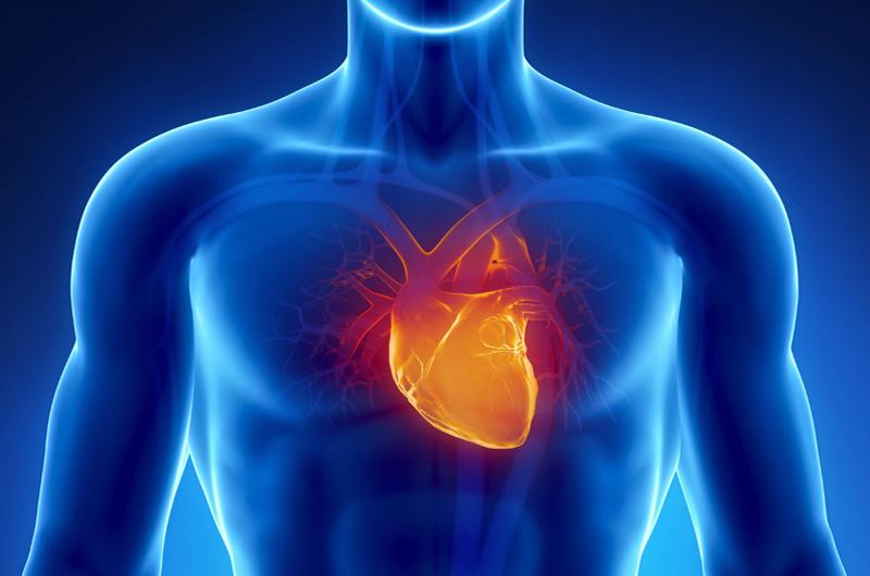 Advierten de riesgos cardiovasculares en jóvenes