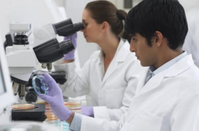 Diputada urge a destinar a ciencia y tecnología uno por ciento del PIB