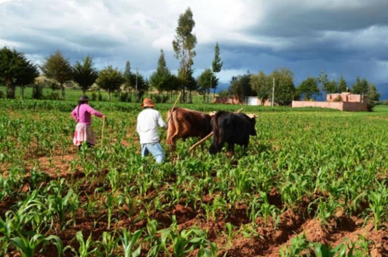 La Agencia Espacial Mexicana busca productividad agrícola con satélites