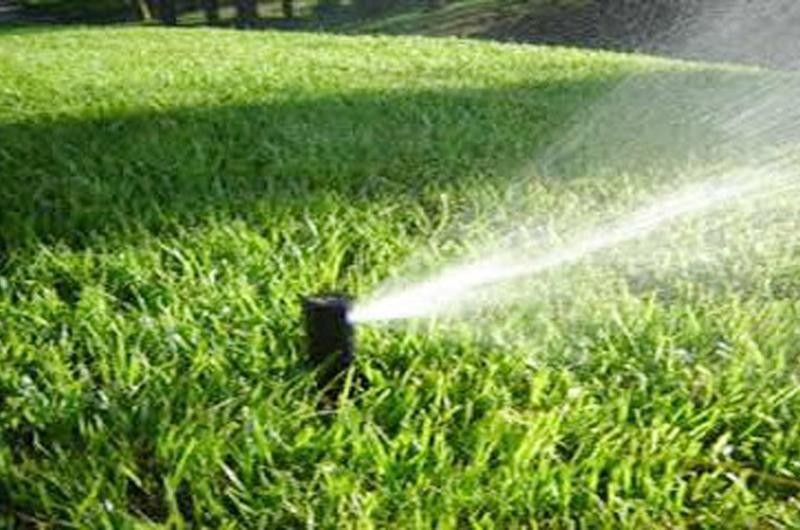 Durante el verano está prohibido el riego de jardines los domingos